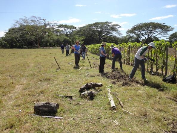 Grupo de Voluntarios Excavando Sanjo para Sistema de Riego- Foto por José María Argueta