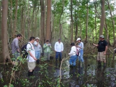 Identificación de comunidades vegetales en el  área de influencia del cauce El Llorón