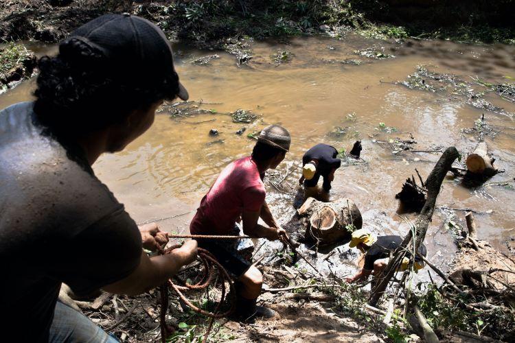 Comunidad participa en técnica comunitaria de Restauración Ecológica de Manglares (REM) en El Salvador