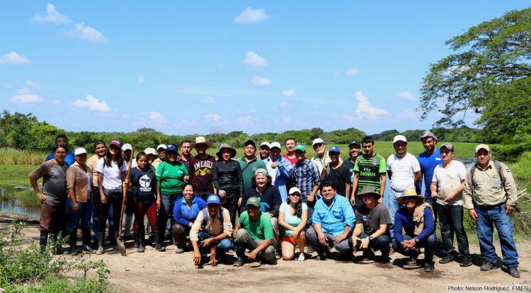 Taller sobre técnicas de restauración de manglares